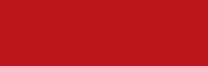 logo công ty nam phong sài gòn